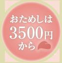 おためしは2000円から